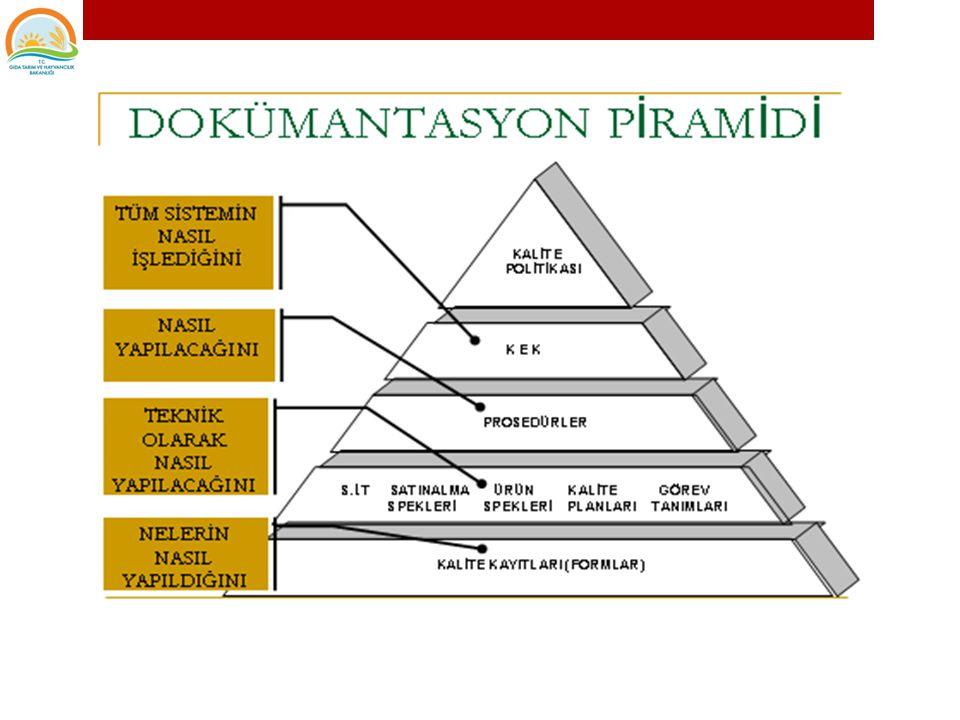 3.Kullanılan Yöntemlerin Dokümantasyonu Uygulama Talimatları ve Prosedürler 12. DOKÜMANTASYON VE KAYIT