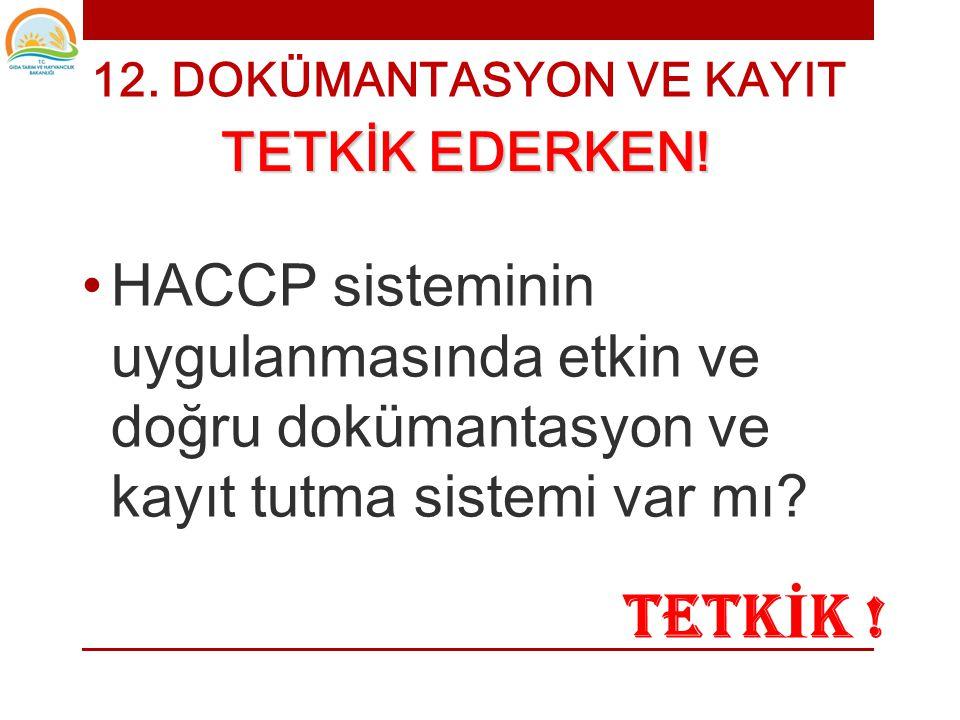 • Yapılan Tipik Hatalar • Önceden doldurulması • Yanlış doldurulması • Yanlış konular • Yanlış yerde durması • HACCP planındakinden farklı limitler •