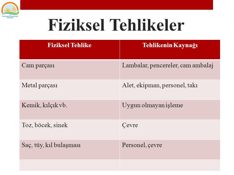 Fiziksel tehlikeler iki kategoriye ayrılabilir 1.Gıdaların doğal yapısından gelen fiziksel tehlikeler (balık kılçıkları, etlerde bulunan kemikler, meyve çekirdekleri vs.
