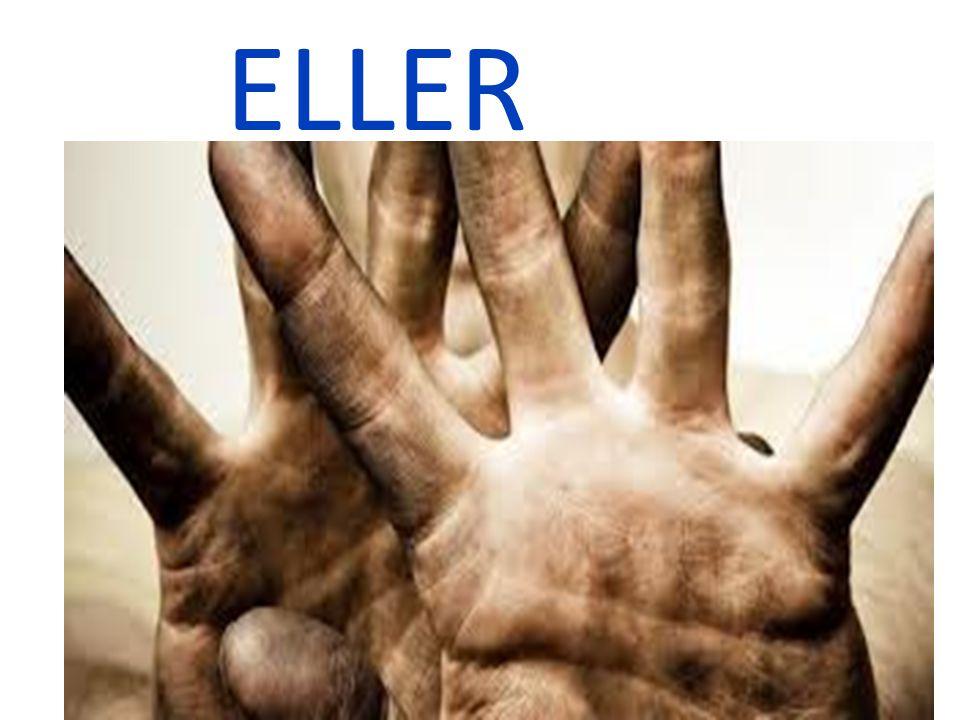 ELLER