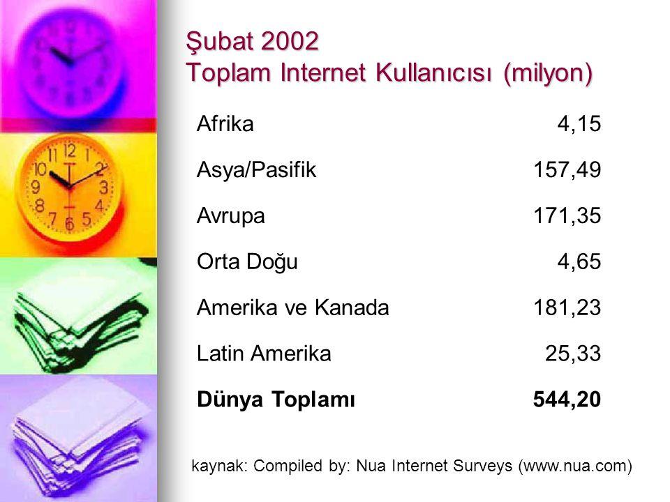 Şubat 2002 Toplam Internet Kullanıcısı (milyon) Afrika4,15 Asya/Pasifik157,49 Avrupa171,35 Orta Doğu4,65 Amerika ve Kanada181,23 Latin Amerika25,33 Dü