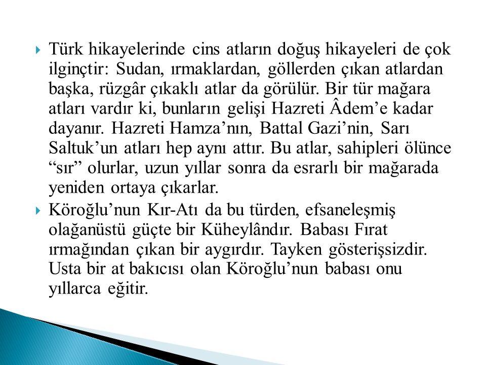  Türk hikayelerinde cins atların doğuş hikayeleri de çok ilginçtir: Sudan, ırmaklardan, göllerden çıkan atlardan başka, rüzgâr çıkaklı atlar da görül