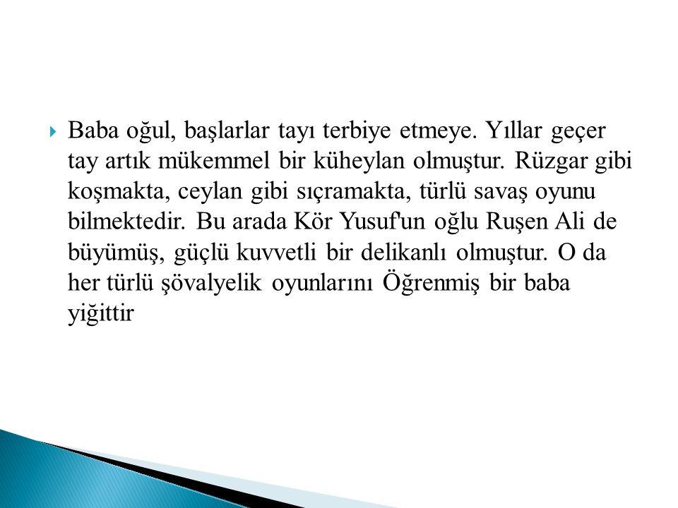  Türk hikayelerinde cins atların doğuş hikayeleri de çok ilginçtir: Sudan, ırmaklardan, göllerden çıkan atlardan başka, rüzgâr çıkaklı atlar da görülür.
