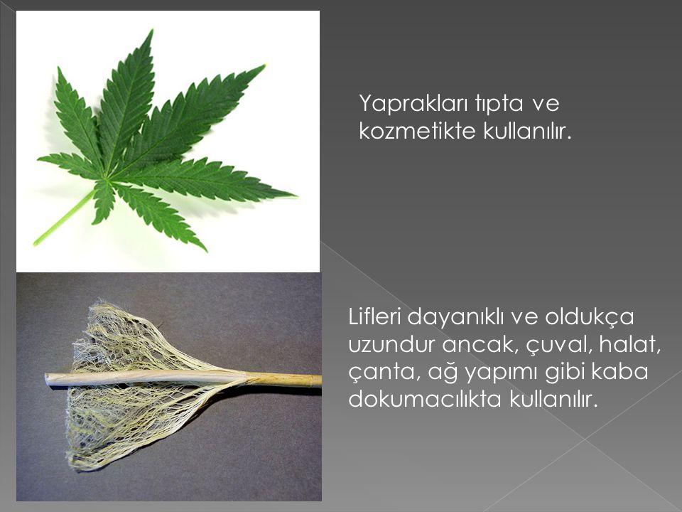 Basılmış Toz Esrar Toz esrar (Gubar) Bununla birlikte Türkiye'de toz (gubar) olarak da kullanımı yaygındır.
