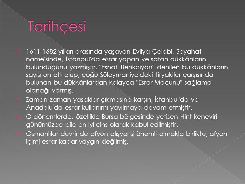  1611-1682 yılları arasında yaşayan Evliya Çelebi, Seyahat- name'sinde, İstanbul'da esrar yapan ve satan dükkânların bulunduğunu yazmıştır.