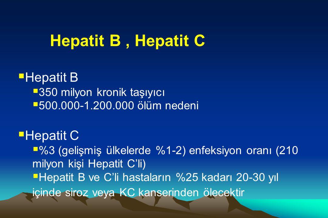  Hepatit B  350 milyon kronik taşıyıcı  500.000-1.200.000 ölüm nedeni  Hepatit C  %3 (gelişmiş ülkelerde %1-2) enfeksiyon oranı (210 milyon kişi