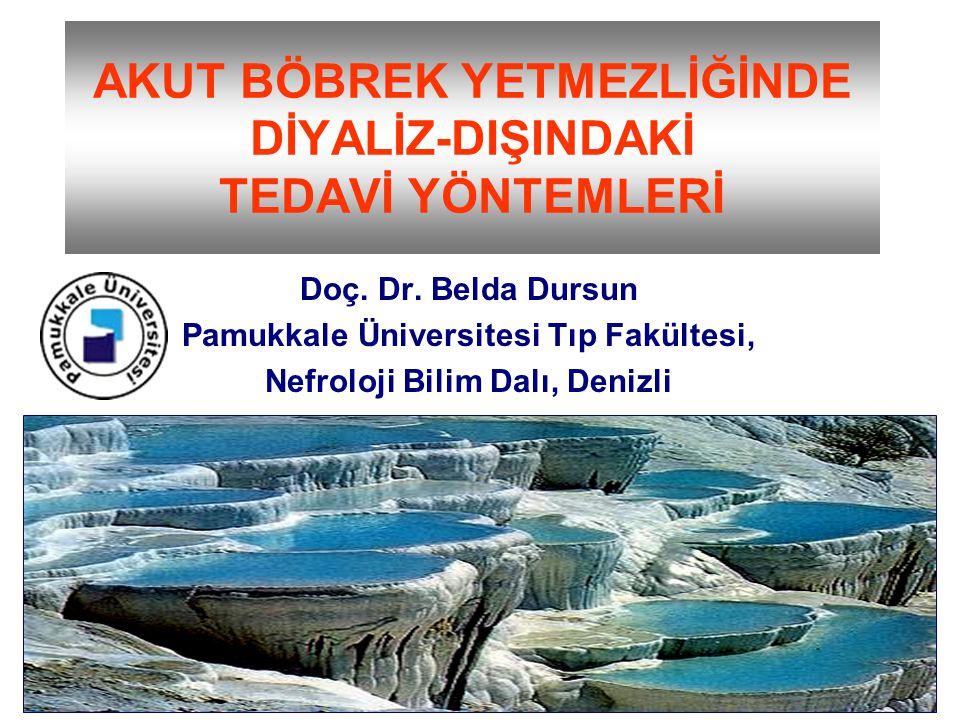 AKUT BÖBREK YETMEZLİĞİNDE DİYALİZ-DIŞINDAKİ TEDAVİ YÖNTEMLERİ Doç. Dr. Belda Dursun Pamukkale Üniversitesi Tıp Fakültesi, Nefroloji Bilim Dalı, Denizl