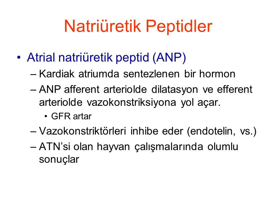 Natriüretik Peptidler •Atrial natriüretik peptid (ANP) –Kardiak atriumda sentezlenen bir hormon –ANP afferent arteriolde dilatasyon ve efferent arteriolde vazokonstriksiyona yol açar.