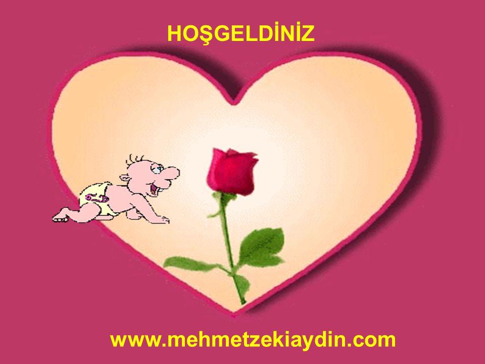 HOŞGELDİNİZ www.mehmetzekiaydin.com