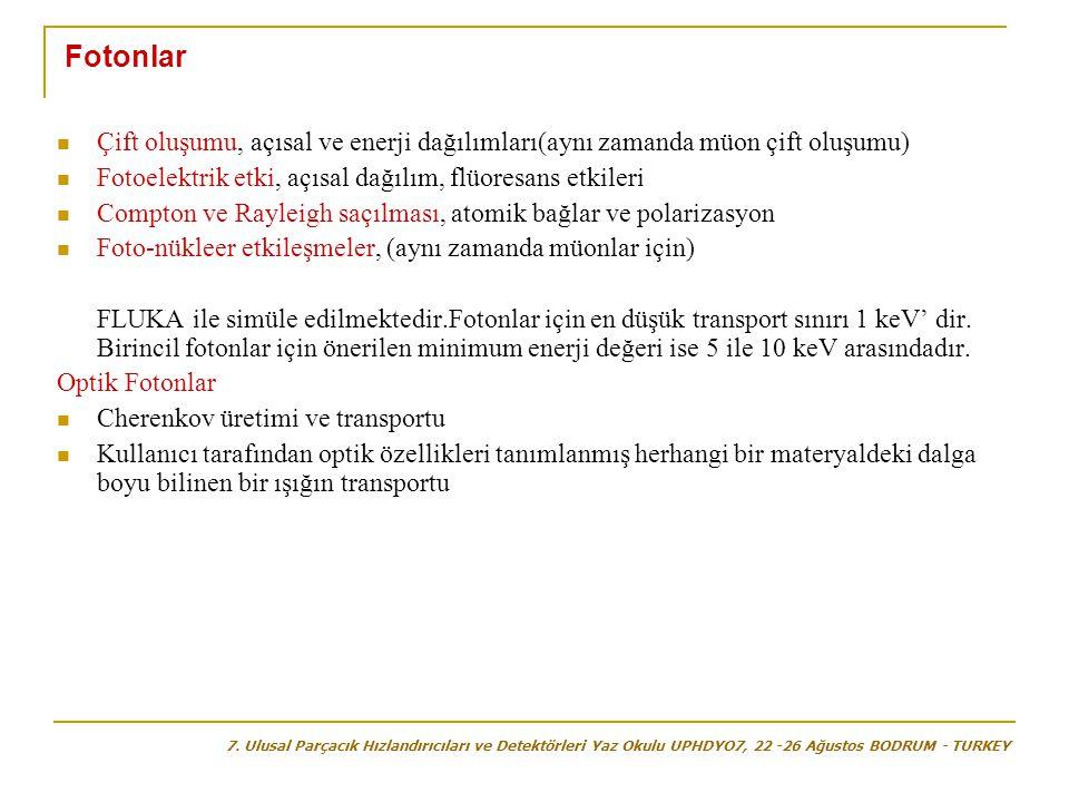 Fotonlar  Çift oluşumu, açısal ve enerji dağılımları(aynı zamanda müon çift oluşumu)  Fotoelektrik etki, açısal dağılım, flüoresans etkileri  Compt