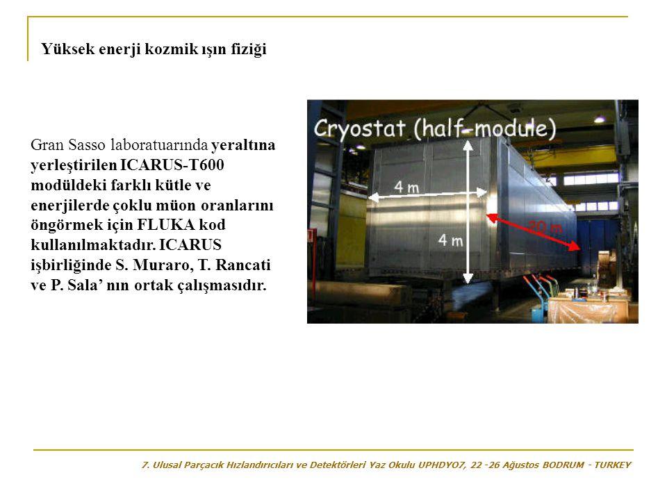 Gran Sasso laboratuarında yeraltına yerleştirilen ICARUS-T600 modüldeki farklı kütle ve enerjilerde çoklu müon oranlarını öngörmek için FLUKA kod kullanılmaktadır.