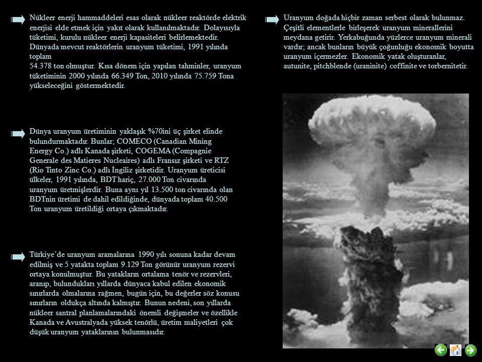 Nükleer enerji hammaddeleri esas olarak nükleer reaktörde elektrik enerjisi elde etmek için yakıt olarak kullanılmaktadır.