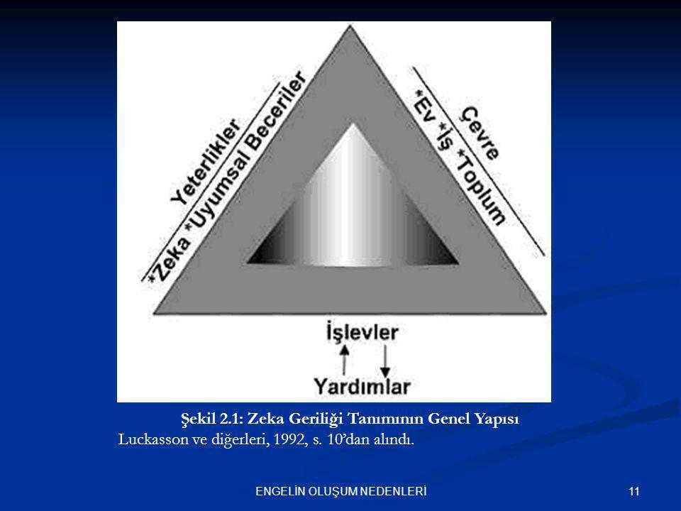 11ENGELİN OLUŞUM NEDENLERİ Şekil 2.1: Zeka Geriliği Tanımının Genel Yapısı Luckasson ve diğerleri, 1992, s. 10'dan alındı.
