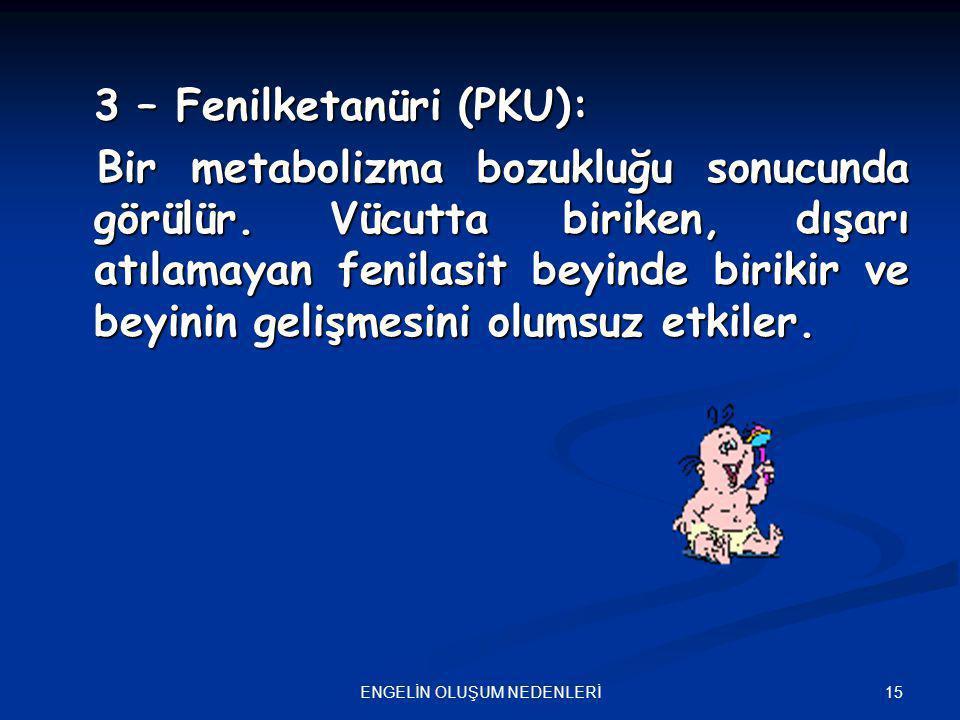 15ENGELİN OLUŞUM NEDENLERİ 3 – Fenilketanüri (PKU): Bir metabolizma bozukluğu sonucunda görülür. Vücutta biriken, dışarı atılamayan fenilasit beyinde