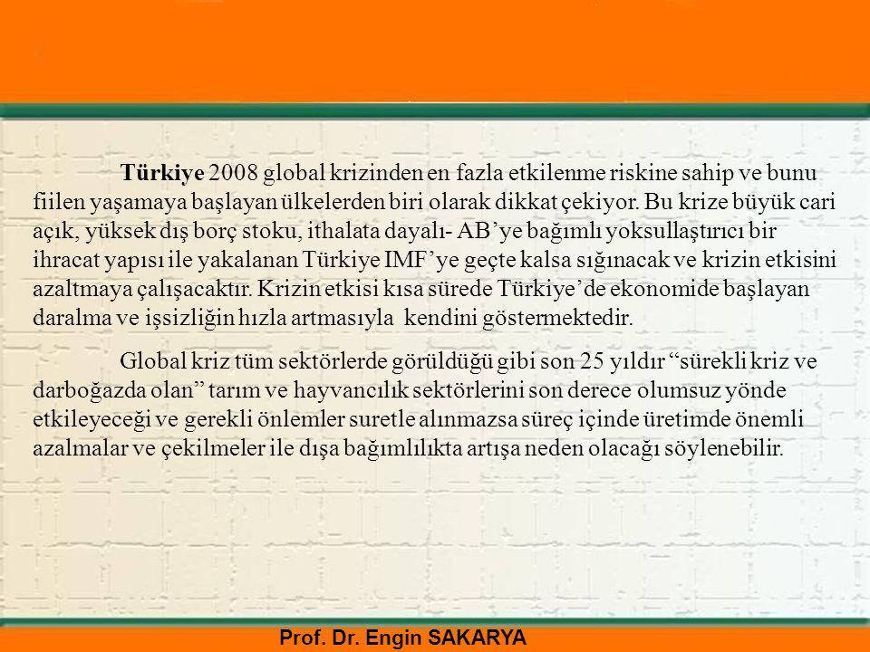 Prof. Dr. Engin SAKARYA Türkiye 2008 global krizinden en fazla etkilenme riskine sahip ve bunu fiilen yaşamaya başlayan ülkelerden biri olarak dikkat