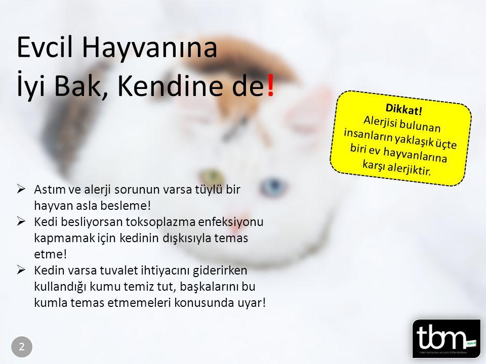 Sayfa 40-41 Evcil Hayvanına İyi Bak, Kendine de! 2 Dikkat! Alerjisi bulunan insanların yaklaşık üçte biri ev hayvanlarına karşı alerjiktir.  Astım ve