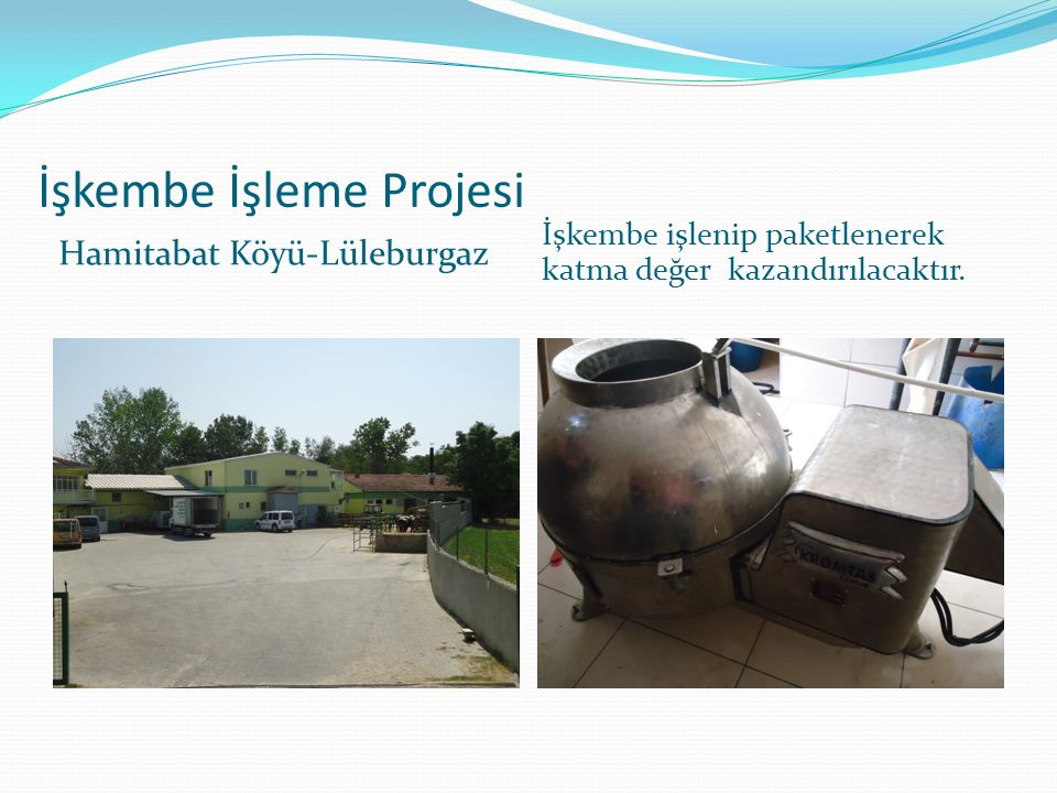 İşkembe İşleme Projesi Hamitabat Köyü-Lüleburgaz İşkembe işlenip paketlenerek katma değer kazandırılacaktır.