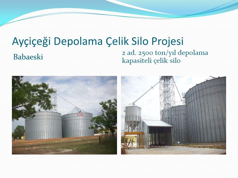 Ayçiçeği Depolama Çelik Silo Projesi Babaeski 2 ad. 2500 ton/yıl depolama kapasiteli çelik silo