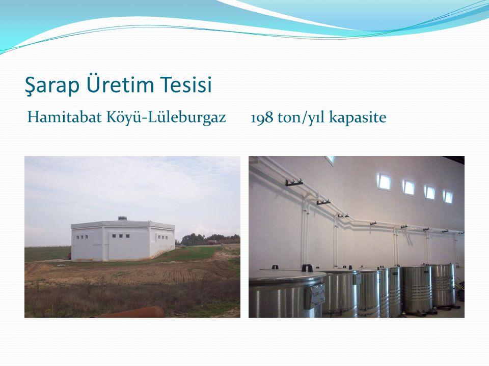 Şarap Üretim Tesisi Hamitabat Köyü-Lüleburgaz 198 ton/yıl kapasite