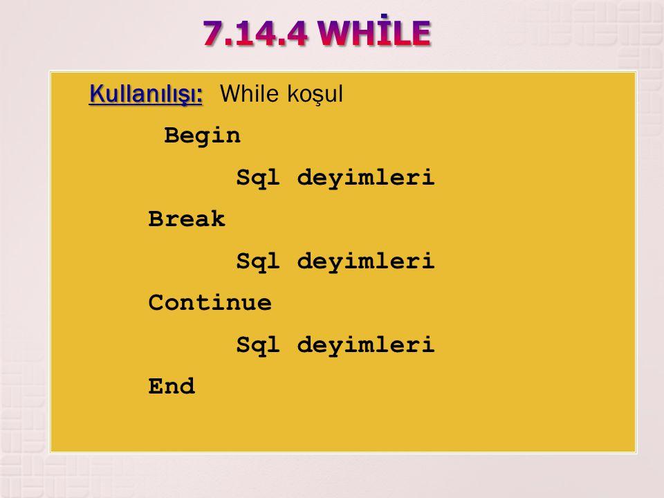 Kullanılışı: Kullanılışı: While koşul Begin Sql deyimleri Break Sql deyimleri Continue Sql deyimleri End