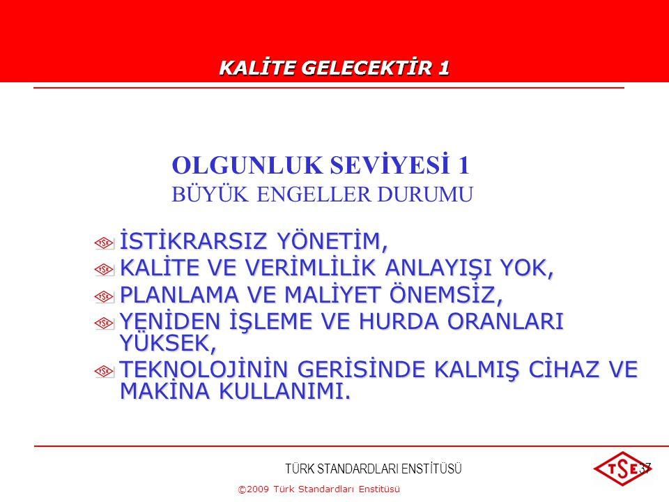 ©2009 Türk Standardları Enstitüsü TÜRK STANDARDLARI ENSTİTÜSÜ36  KALİTE, FAZLA HARCAMA GEREKTİRİR.  KALİTE SİSTEMİ PAHALI BİR İŞTİR.  KALİTE SADECE