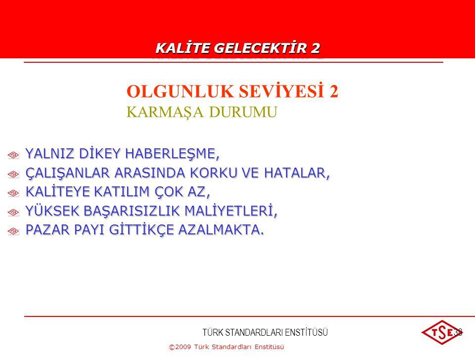 ©2009 Türk Standardları Enstitüsü TÜRK STANDARDLARI ENSTİTÜSÜ37 İSTİKRARSIZ YÖNETİM, KALİTE VE VERİMLİLİK ANLAYIŞI YOK, PLANLAMA VE MALİYET ÖNEMSİZ, Y