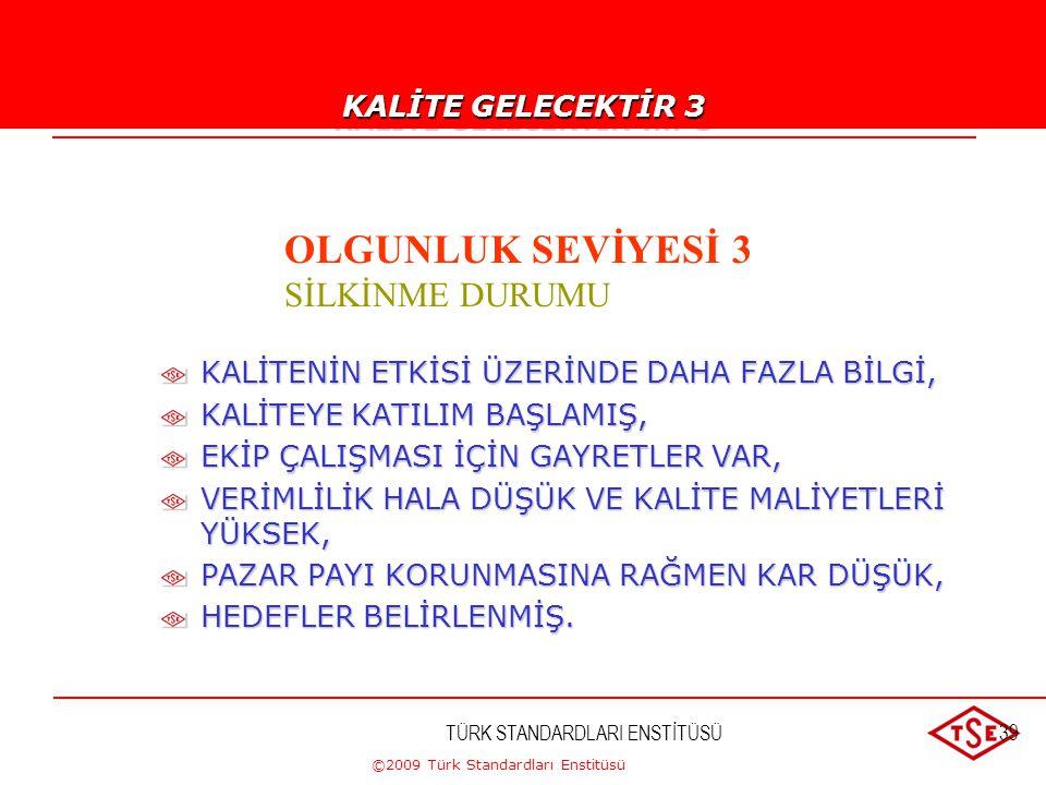 ©2009 Türk Standardları Enstitüsü TÜRK STANDARDLARI ENSTİTÜSÜ38 OLGUNLUK SEVİYESİ 2 KARMAŞA DURUMU YALNIZ DİKEY HABERLEŞME, ÇALIŞANLAR ARASINDA KORKU