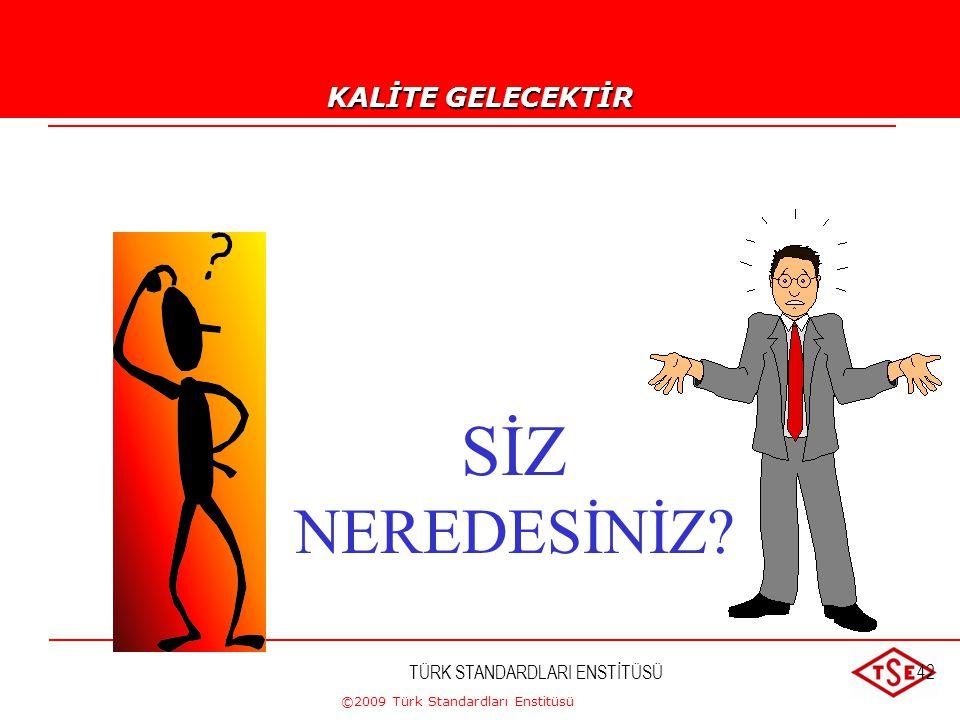 ©2009 Türk Standardları Enstitüsü TÜRK STANDARDLARI ENSTİTÜSÜ41 KALİTE GELECEKTİR !...-5 OLGUNLUK SEVİYESİ 5 BİR EKİP ÇALIŞMASI KURULUŞTA YATAY VE DİK