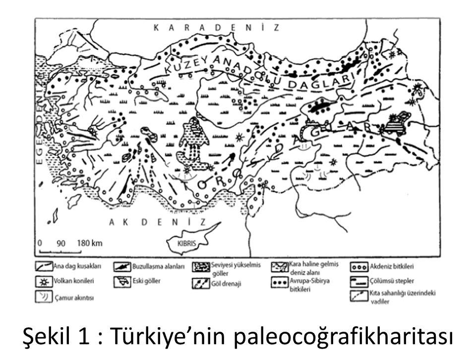 Şekil 1 : Türkiye'nin paleocoğrafikharitası