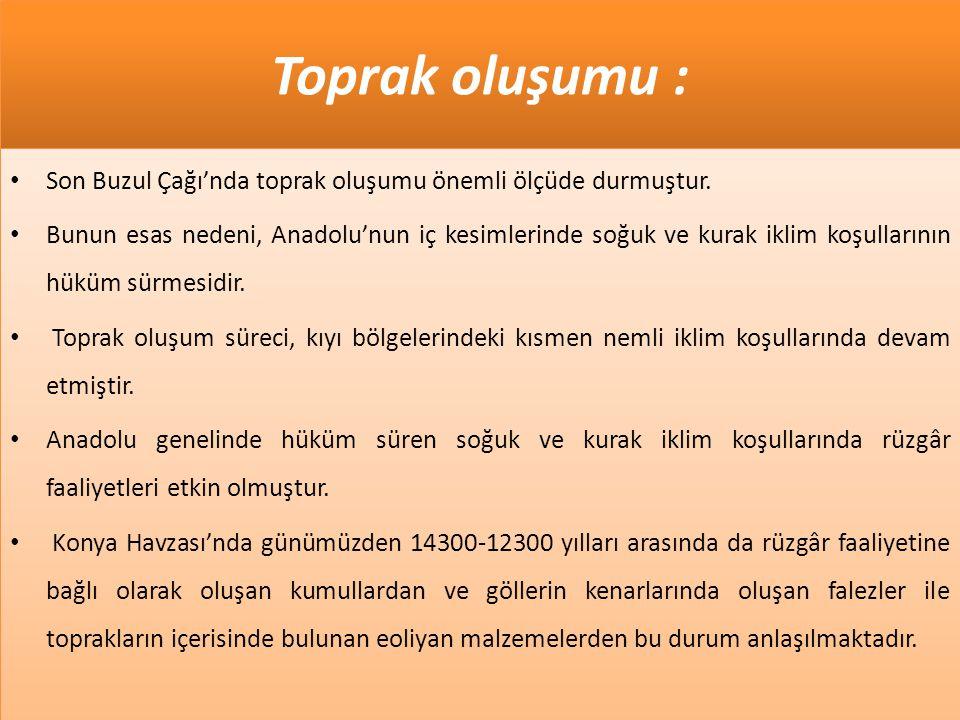 Toprak oluşumu : • Son Buzul Çağı'nda toprak oluşumu önemli ölçüde durmuştur. • Bunun esas nedeni, Anadolu'nun iç kesimlerinde soğuk ve kurak iklim ko
