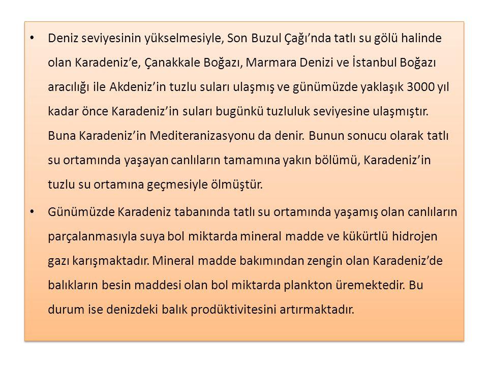 • Deniz seviyesinin yükselmesiyle, Son Buzul Çağı'nda tatlı su gölü halinde olan Karadeniz'e, Çanakkale Boğazı, Marmara Denizi ve İstanbul Boğazı arac