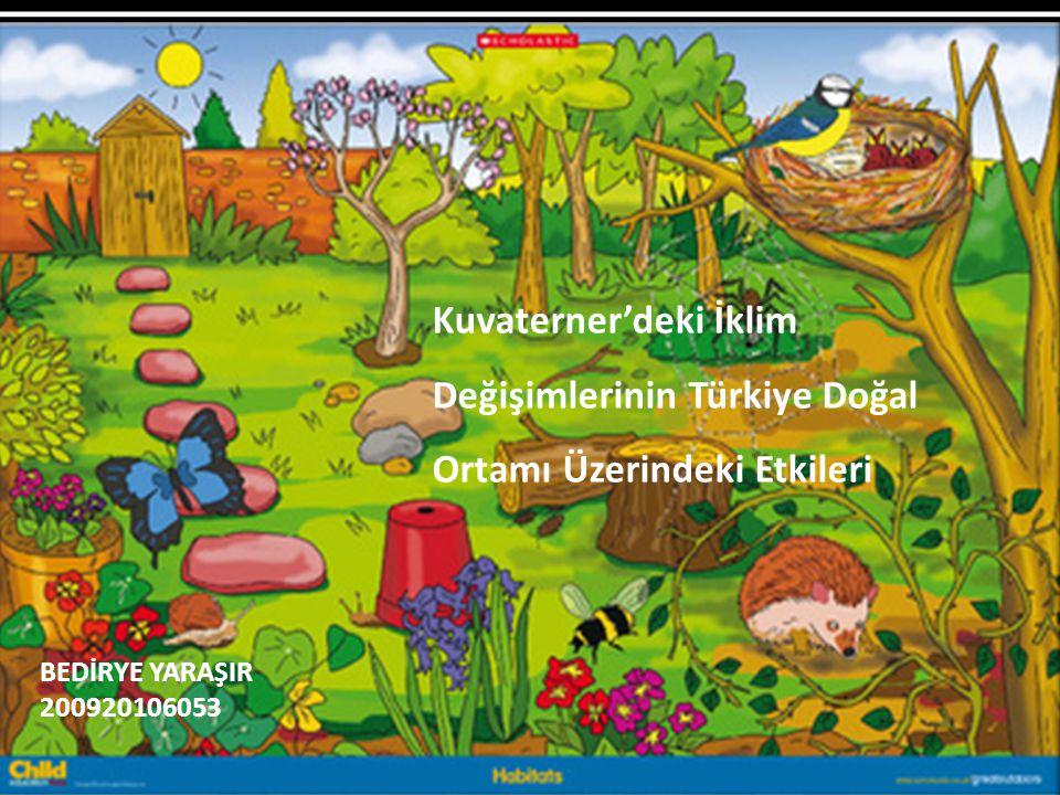 Kuvaterner'deki İklim Değişimlerinin Türkiye Doğal Ortamı Üzerindeki Etkileri BEDİRYE YARAŞIR 200920106053