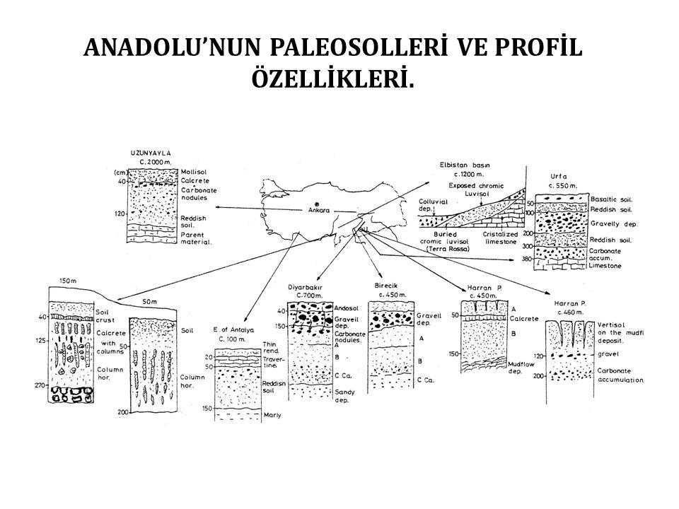 ANADOLU'NUN PALEOSOLLERİ VE PROFİL ÖZELLİKLERİ.