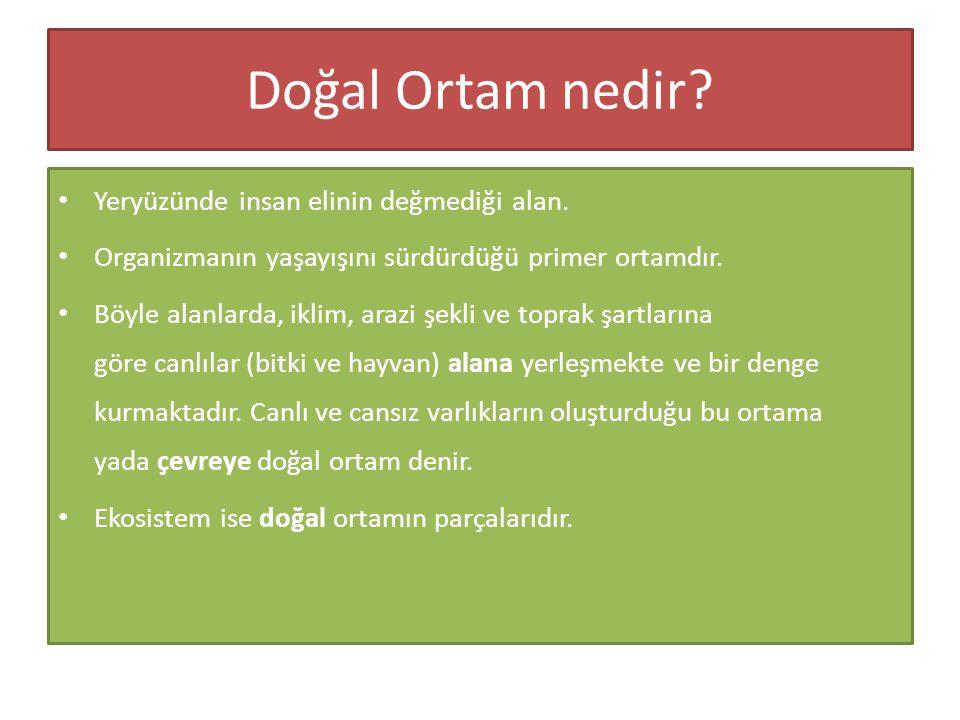 Sonuç olarak … • Pleistosen sonu ve Kuvaterner başlarındaki iklim değişmelerinin, Türkiye'nin morfolojisi, ilk yerleşmelerin kurulması, toprak ve bitki örtüsü üzerinde önemli etkisi olmuştur.