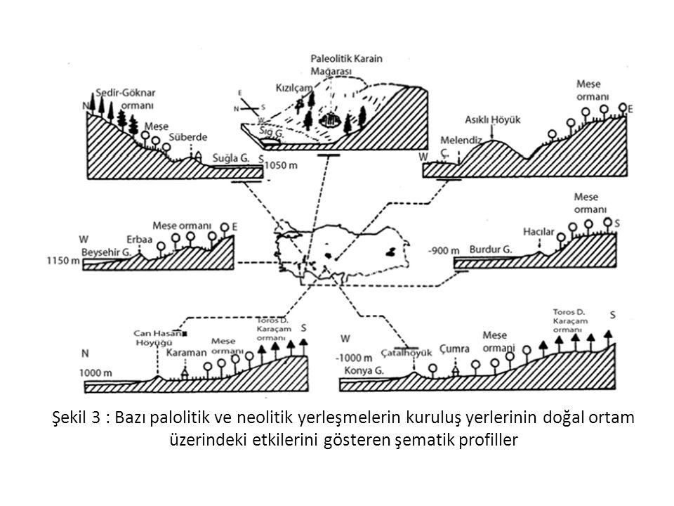 Şekil 3 : Bazı palolitik ve neolitik yerleşmelerin kuruluş yerlerinin doğal ortam üzerindeki etkilerini gösteren şematik profiller