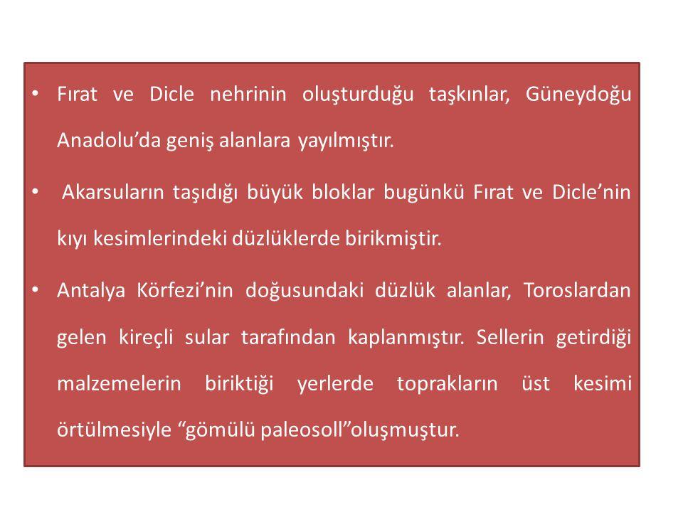 • Fırat ve Dicle nehrinin oluşturduğu taşkınlar, Güneydoğu Anadolu'da geniş alanlara yayılmıştır. • Akarsuların taşıdığı büyük bloklar bugünkü Fırat v