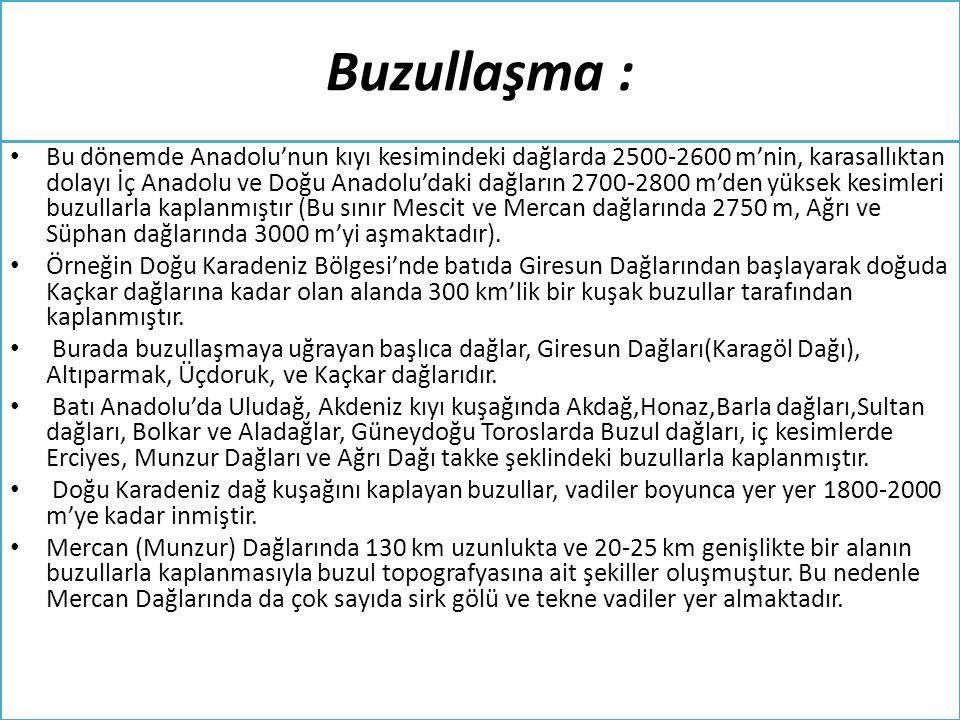 Buzullaşma : • Bu dönemde Anadolu'nun kıyı kesimindeki dağlarda 2500-2600 m'nin, karasallıktan dolayı İç Anadolu ve Doğu Anadolu'daki dağların 2700-28