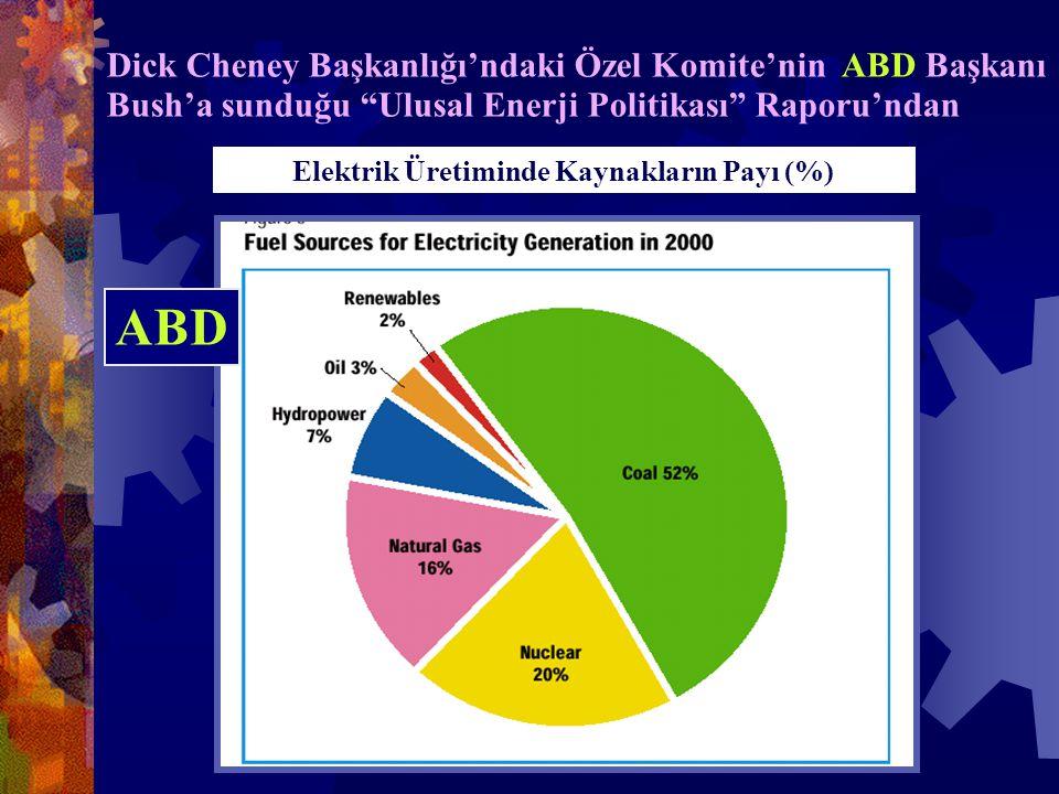 Dick Cheney Başkanlığı'ndaki Özel Komite'nin ABD Başkanı Bush'a sunduğu Ulusal Enerji Politikası Raporu'ndan Elektrik Üretiminde Kaynakların Payı (%) ABD