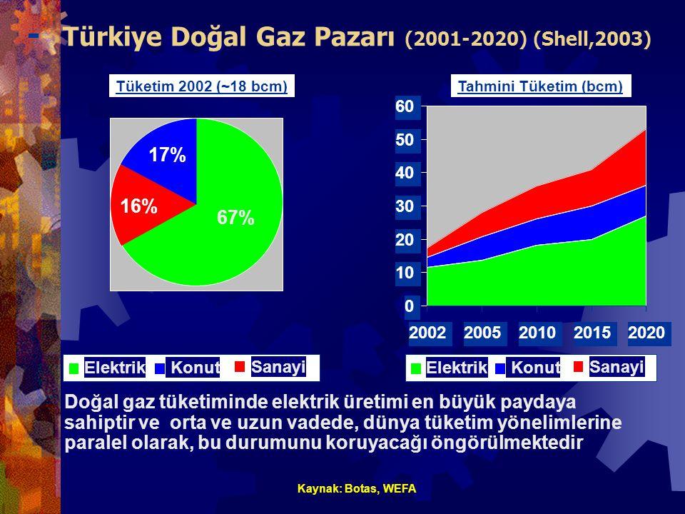 Türkiye Doğal Gaz Pazarı (2001-2020) (Shell,2003) 0 10 20 30 40 50 60 20022005201020152020 Doğal gaz tüketiminde elektrik üretimi en büyük paydaya sahiptir ve orta ve uzun vadede, dünya tüketim yönelimlerine paralel olarak, bu durumunu koruyacağı öngörülmektedir Kaynak: Botas, WEFA Tahmini Tüketim (bcm)Tüketim 2002 (~18 bcm) 67% 16% 17% Elektrik Sanayi KonutElektrik Sanayi Konut