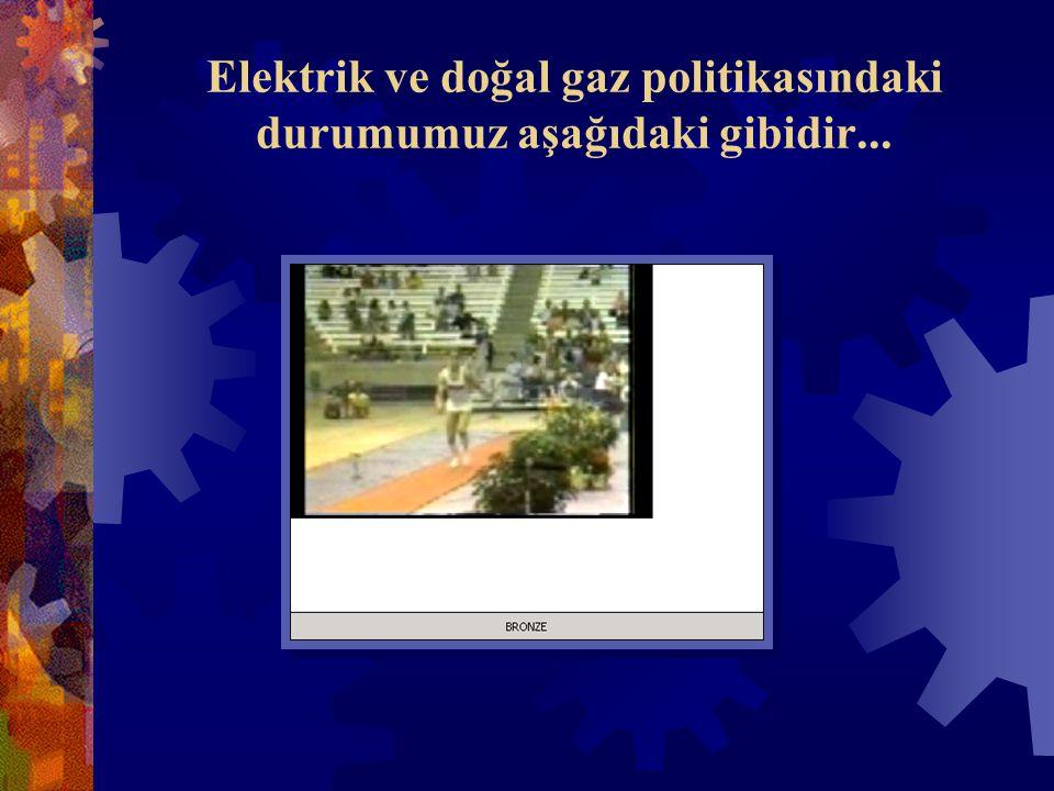 Elektrik ve doğal gaz politikasındaki durumumuz aşağıdaki gibidir...