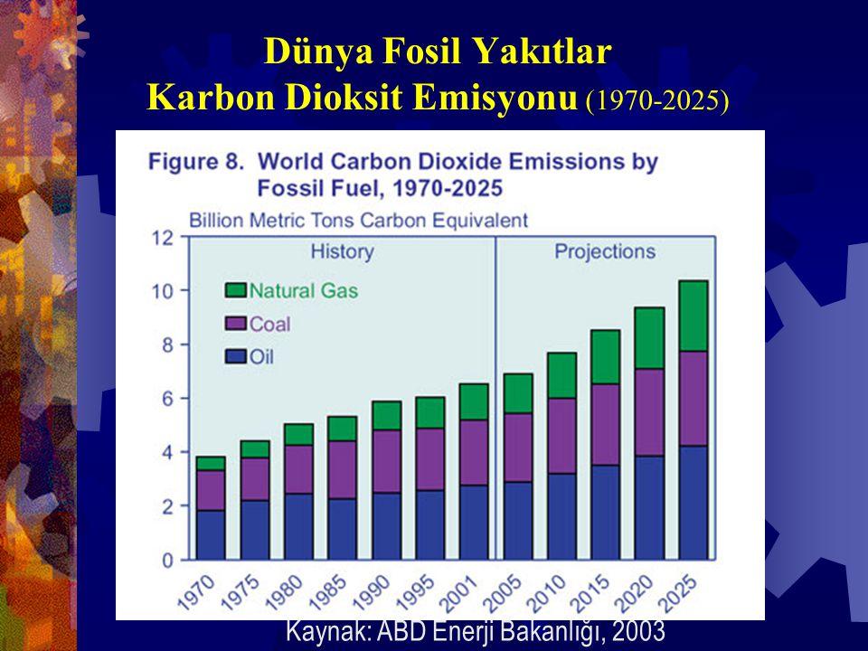 Dünya Fosil Yakıtlar Karbon Dioksit Emisyonu (1970-2025) Kaynak: ABD Enerji Bakanlığı, 2003
