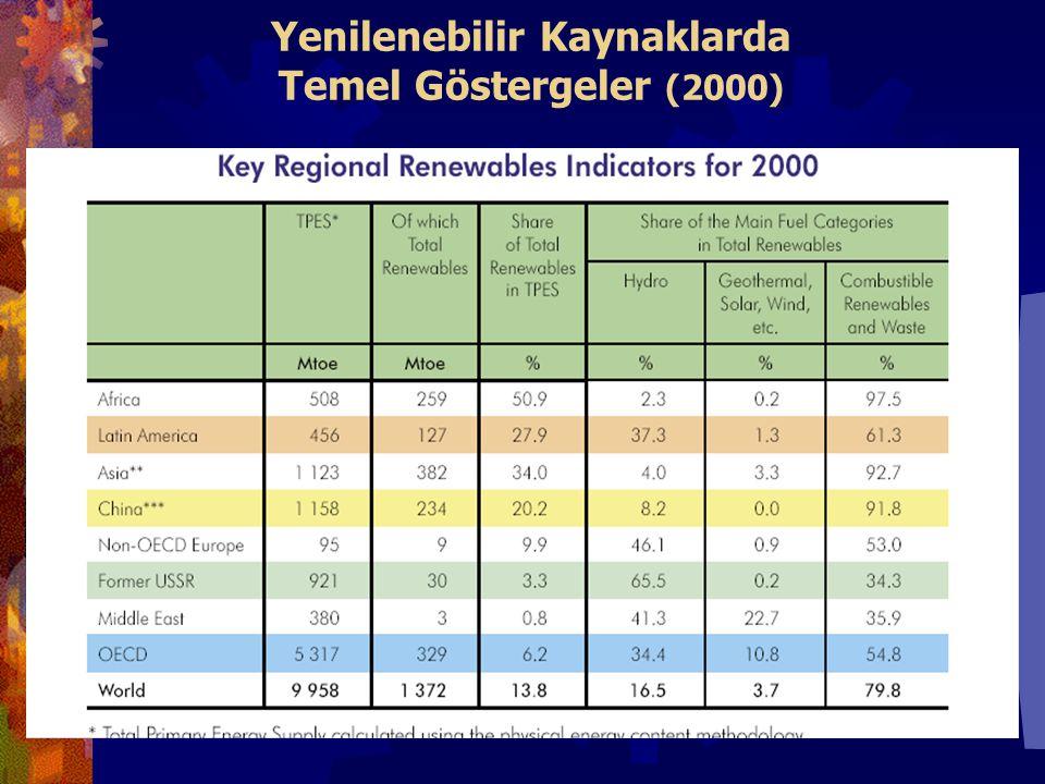 Yenilenebilir Kaynaklarda Temel Göstergeler (2000)