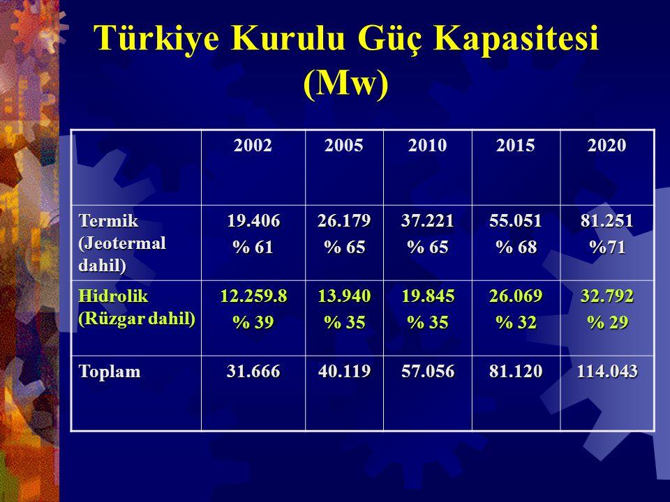 Türkiye Kurulu Güç Kapasitesi (Mw) 20022005201020152020 Termik (Jeotermal dahil) 19.406 % 61 26.179 % 65 37.221 55.051 % 68 81.251%71 Hidrolik (Rüzgar dahil) 12.259.8 % 39 13.940 % 35 19.845 26.069 % 32 32.792 % 29 Toplam31.66640.11957.05681.120114.043