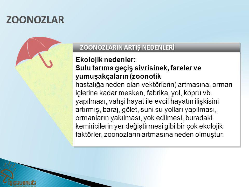 ZOONOZLARIN ARTIŞ NEDENLERİ Ekolojik nedenler: Sulu tarıma geçiş sivrisinek, fareler ve yumuşakçaların (zoonotik hastalığa neden olan vektörlerin) art