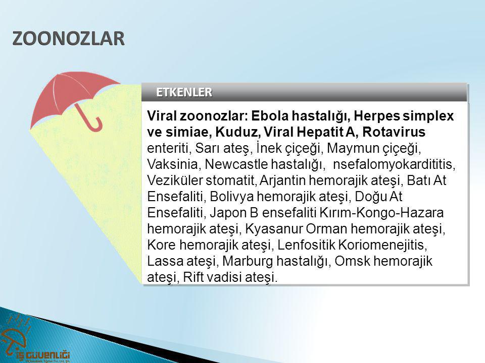 ETKENLERETKENLER Viral zoonozlar: Ebola hastalığı, Herpes simplex ve simiae, Kuduz, Viral Hepatit A, Rotavirus enteriti, Sarı ateş, İnek çiçeği, Maymu