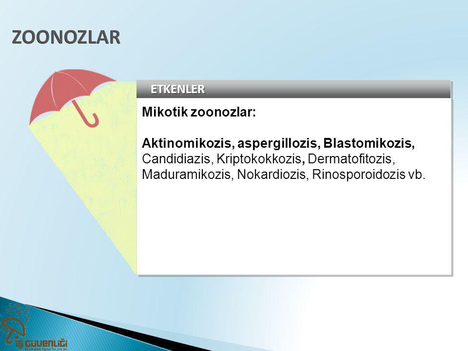ETKENLERETKENLER Mikotik zoonozlar: Aktinomikozis, aspergillozis, Blastomikozis, Candidiazis, Kriptokokkozis, Dermatofitozis, Maduramikozis, Nokardioz