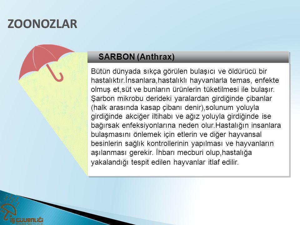 SARBON (Anthrax) Bütün dünyada sıkça görülen bulaşıcı ve öldürücü bir hastalıktır.İnsanlara,hastalıklı hayvanlarla temas, enfekte olmuş et,süt ve bunl
