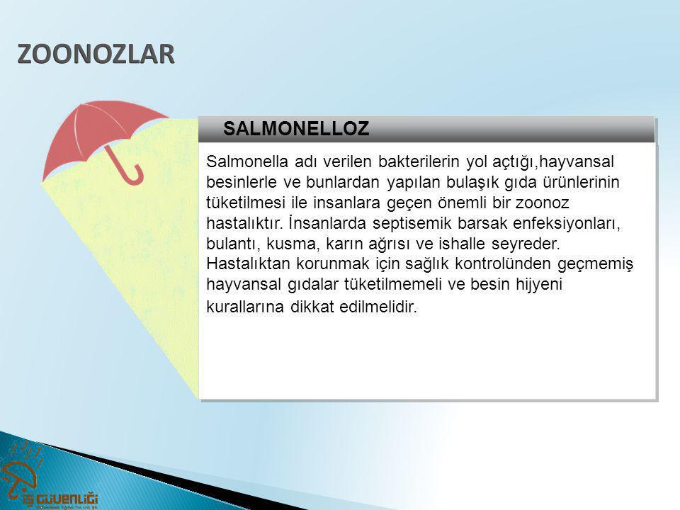 SALMONELLOZ Salmonella adı verilen bakterilerin yol açtığı,hayvansal besinlerle ve bunlardan yapılan bulaşık gıda ürünlerinin tüketilmesi ile insanlar