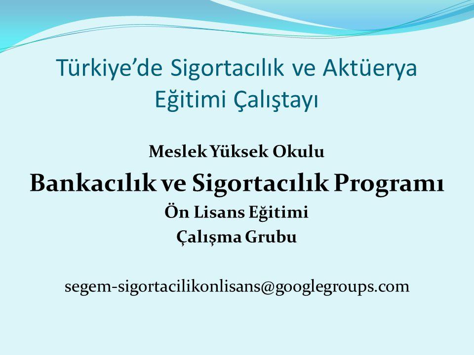 Türkiye'de Sigortacılık ve Aktüerya Eğitimi Çalıştayı Meslek Yüksek Okulu Bankacılık ve Sigortacılık Programı Ön Lisans Eğitimi Çalışma Grubu segem-si