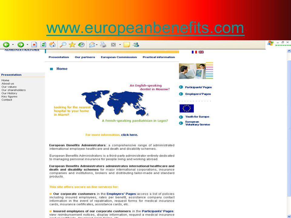 Ardından… Sol tarafta görülen European Volunteer Service bağlantısını açmanız gerekmektedir.